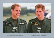 (1156) William and Harry (17 x 12 cm)