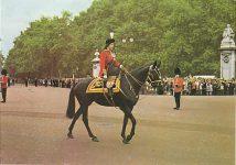 (232) Queen Elizabeth