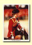 (288) Queen Elizabeth (17 x 12 cm)