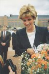 (1735) Princess Diana, 1993
