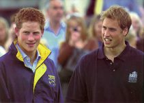 (71) William & Harry (17 x 12 cm)