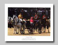 (177) Queen Elizabeth (15,5 x 12 cm)