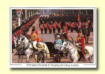 (300) Queen Elizabeth (17 x 12 cm)