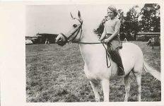 (276) Princess Irene, 1952
