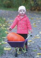 (1087) Princess Estelle, autumn 2013