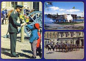 (253) King Carl Gustaf