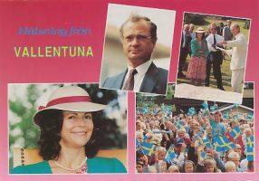 (915) Silvia & Carl Gustaf, 1991