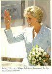 (126) Princess Diana, Bradford Exchange
