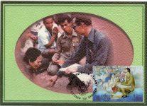 (7) Maxicard King Bhumibol