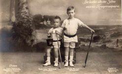(327) Wilhelm and Louis Ferdinand, 1910