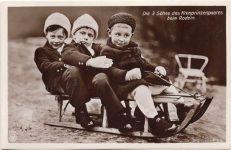 (329) Wilhelm, Louis Ferdinand and Hubertus, 1912