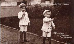 (342) Wilhelm and Louis Ferdinand